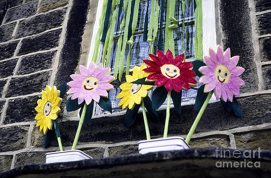 Smiling Flowers by Steve Outram