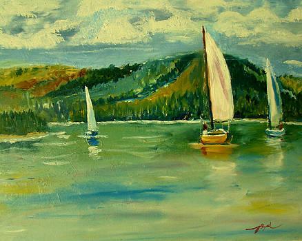 Smith Mountain Lake  by Joe Byrd