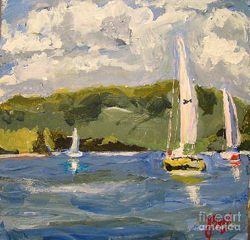 Smith Mountain Lake Virginia by Joe Byrd