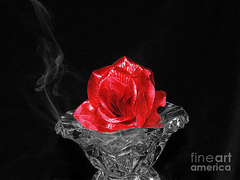 Smoke and Rose by ChelsyLotze International Studio