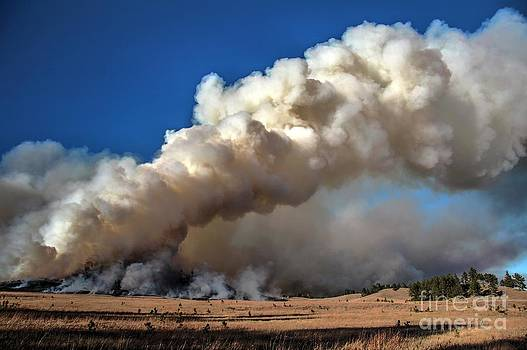 Smoke column from the Norbeck prescribed fire. by Bill Gabbert
