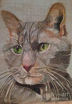 Smokey's portrait  by Brigitte Emme