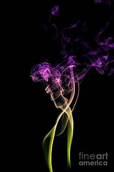 Alexander Butler - Smoky Flower