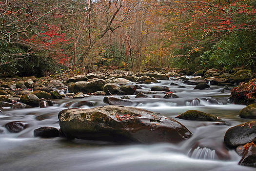 Smoky Mountain Stream by Dave Ross