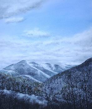 Smoky Mountain Winter by Penny Johnson