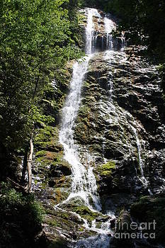 Smoky Mountains Waterfall by Jerry Bunger