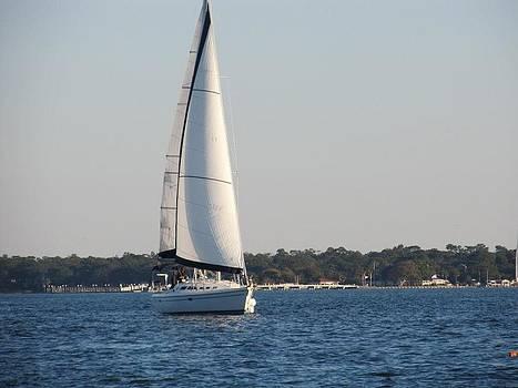 Smooth Sailing Carolina by Joetta Beauford