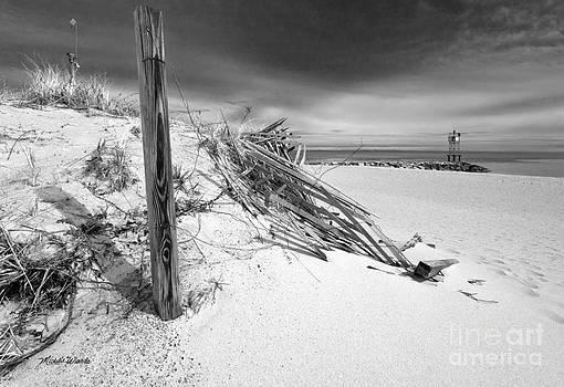 Michelle Wiarda - Smugglers Beach