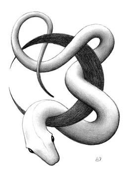 Snake by Erla Alberts