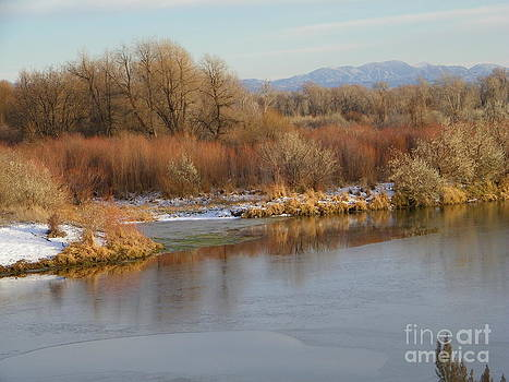 Snake River Chill by Gale Cochran-Smith
