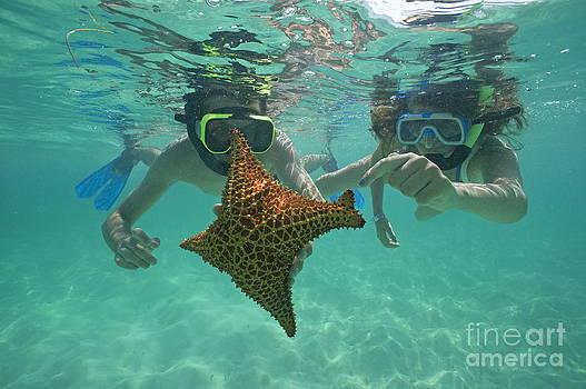 Sami Sarkis - Snorkellers holding a four legs starfish