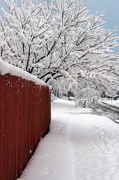 Snow and Fence by Laurie Poetschke