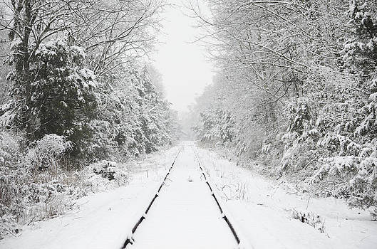 Snow Bound by Nancy Edwards