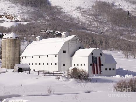 Snow Bound by Sandy Molinaro