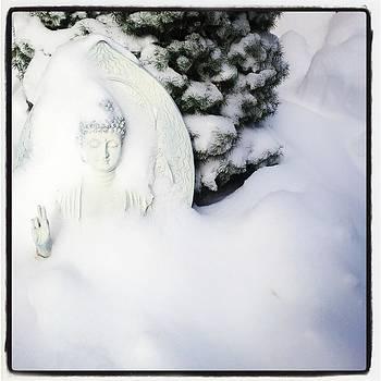 Snow Buddha by Anastasia Pleasant