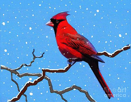 Snow Card by Robert Foster