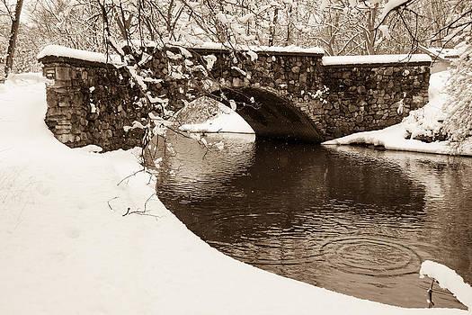 Snow Covered Bidge by Robert Painter