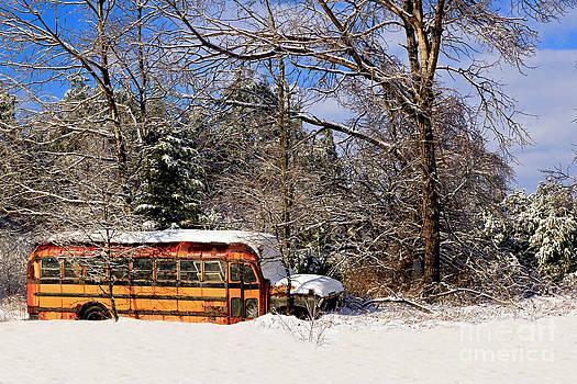Brenda Giasson - Snow Day