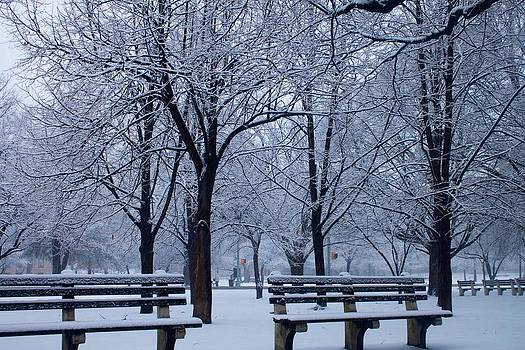 Snow Day by Richie Stewart
