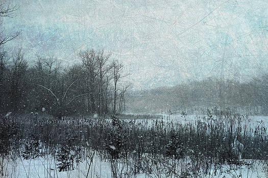 Snow Day by Zan Barrage