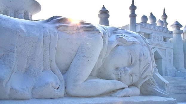 Snow Dreams by Brett Geyer