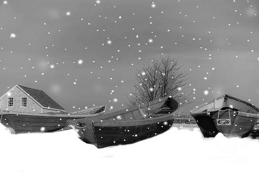 Brenda Giasson - Snow Falling in the Harbor
