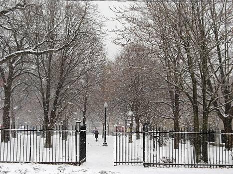 Alfred Ng - snow falling on Grange park
