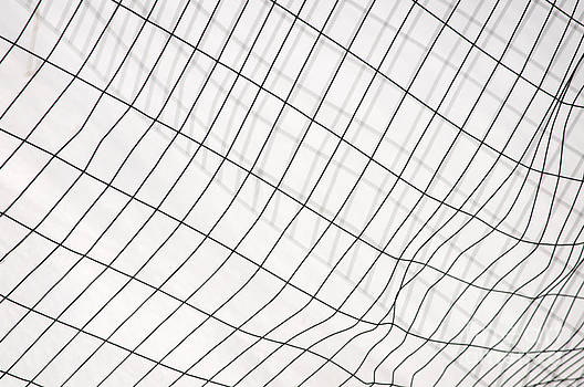 Snow fence abstraction by Cynthia Holling-Morris