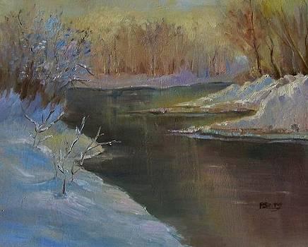 Snow Glow by Patricia Seitz