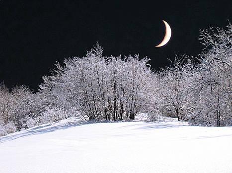 Snow In The Moonlight by Giorgio Darrigo
