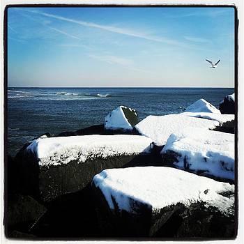 Snow-kissed Jetty Rocks by Anastasia Pleasant