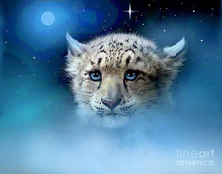 Snow Leopard Cub by Robert Foster