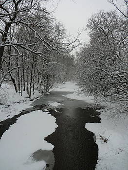 Snow On Brook by Kate Koehn