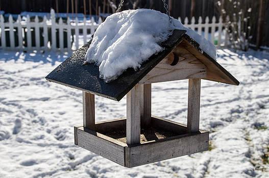 Mick Anderson - Snow on the Bird Feeder