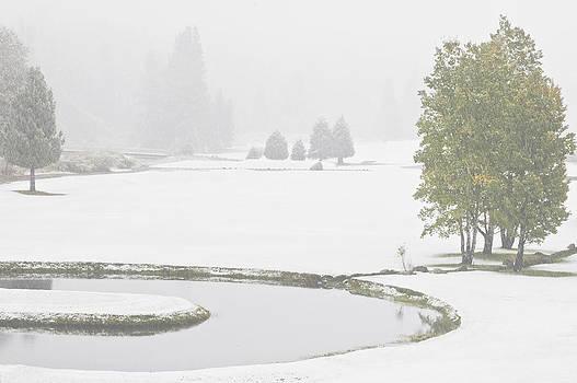 Mick Burkey - Snow on the Meadows
