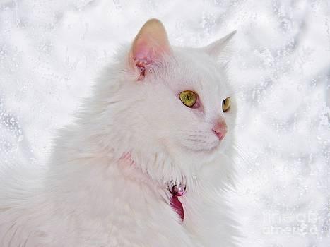 Judy Via-Wolff - Snow Princess
