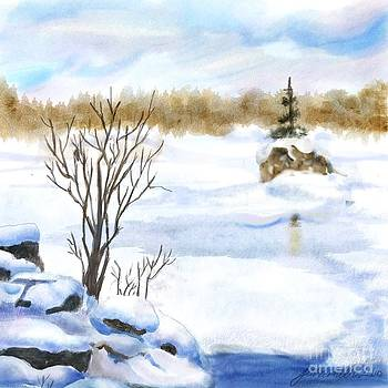 Snow Study Two by Joan A Hamilton
