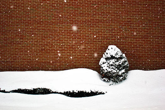 Snow Wall by Tim Buisman