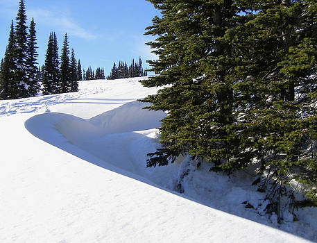 Snow Well - Pacific Northwest by Jane Eleanor Nicholas