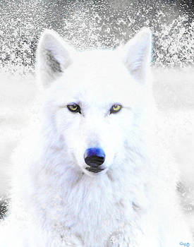 Nick Gustafson - Snow Wolf