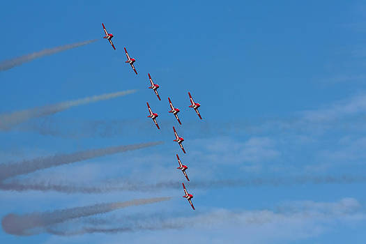 Snowbirds by Matt Dobson