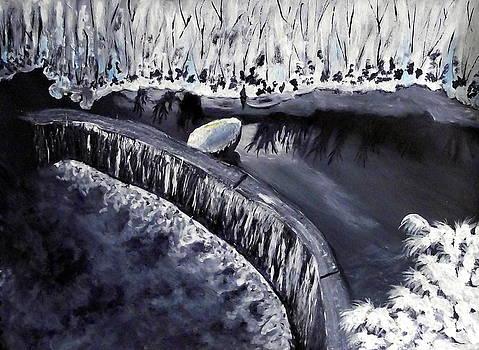 Snowbound Weir by Sandy Wager