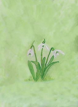 Snowdrops by Moya Moon