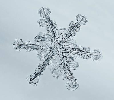 Tom Biegalski - Snowflake 3