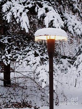 Snowlight by Avis  Noelle