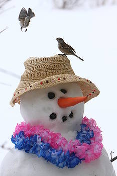 Snowman and birds by Kevin Snider