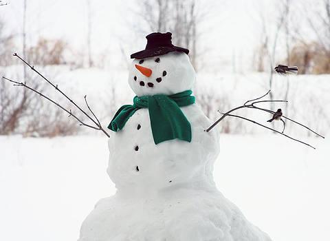 Snowman feeder by Kevin Snider