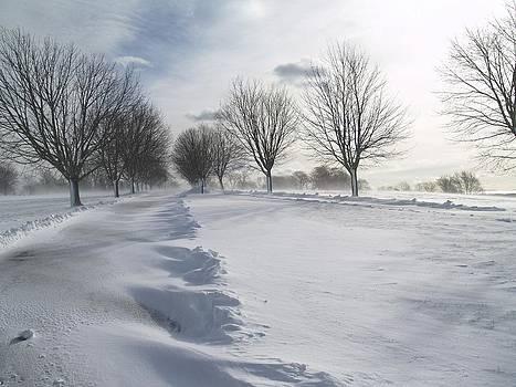 Snowscape by Patricia McKay