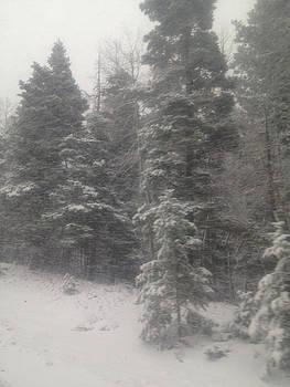 Snowscape Taos by Bobbi Bennett