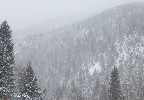 Snowscape Taos II by Bobbi Bennett